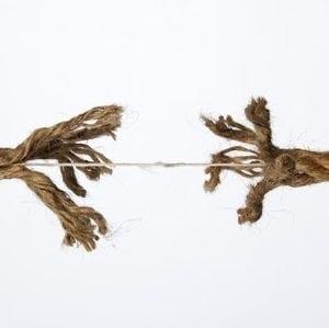 sash rope