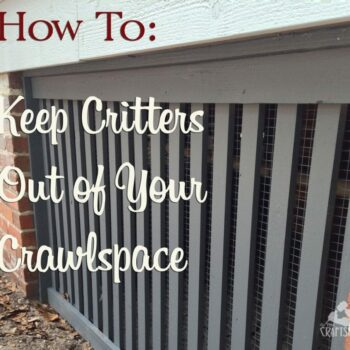how-to-keep-critters-out-of-your-crawlspace
