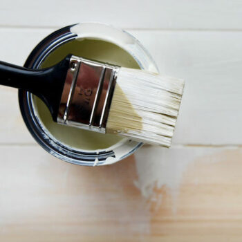 Oil vs Latex/ Which Paint is Best?