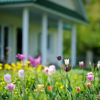 How To: Get an Old House Ready for Spring