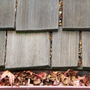 The 6 Best Gutter Cleaning Tools